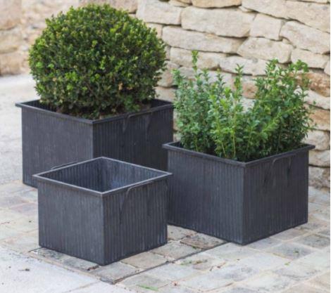 Chậu vuông trồng cây cảnh composite phù hợp với nhiều không gian