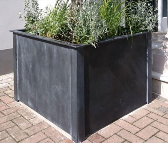 Chậu vuông trồng cây cảnh đẹp mắt cho không gian thêm phần tươi mát