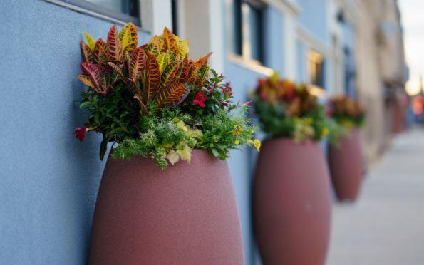 Công ty sản xuất chậu hoa composite uy tín tạo ra những chậu hoa đẹp